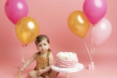 Pink and gold cake smash theme for Wirral Photo Studio