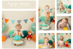 Fox Themed Cake Smash and Splash - Wirral Based Photographer
