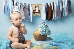 Brown tie with blue spots with matching cake and bunting - Wirral Photo Studio