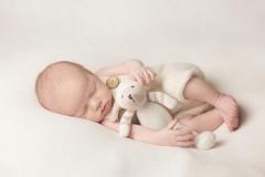 Newborn baby resting with favourite teddy - High Standard Safe Studio Wirral