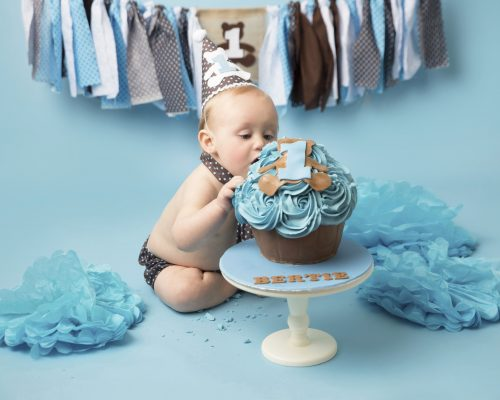1st Birthday Cake Smash Photo Session Wirra, cake with blue icing along with brown matching costume and bunting